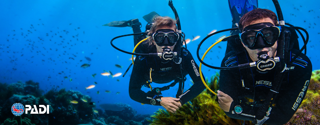 PADI Certification courses